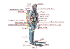 Best physical therapist nyc dive blog pics 2