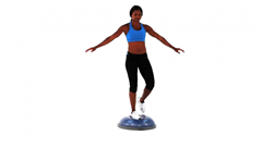 Bosu ball best physical therapist blog