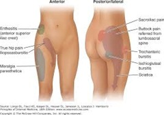 Physical Therapy for Hip Pain PO2